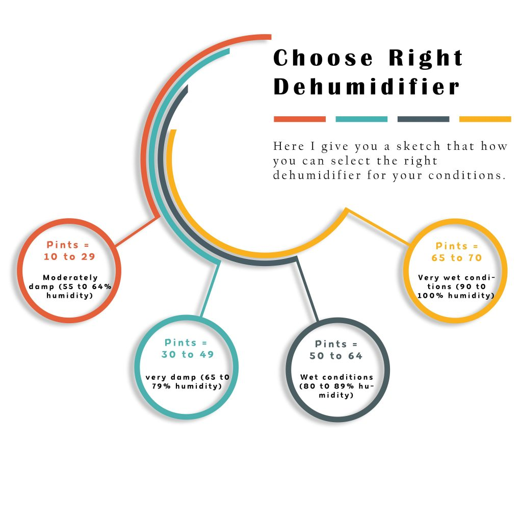 Best dehumidifier infographic